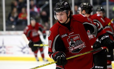 Potential Shutdown Defenseman in the 2016 NHL Draft