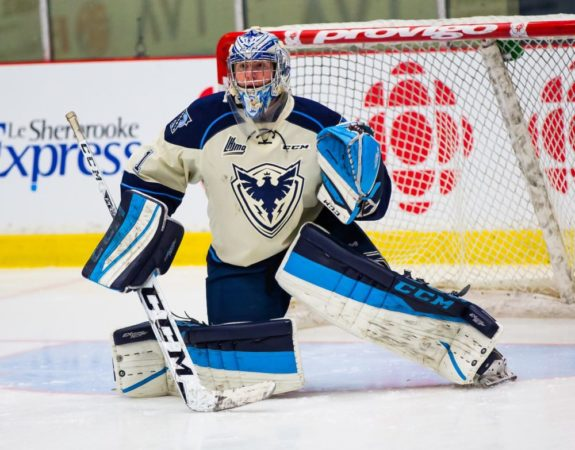 Evan Fitzpatrick of the Sherbrooke Phoenix