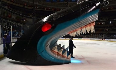 San Jose Sharks Will Return to the Stanley Cup Final Next Year
