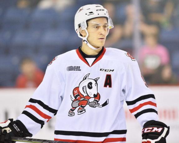Jordan Maletta, OHL, Niagara Icedogs