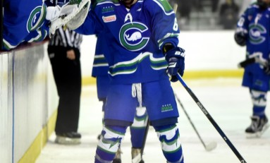 Whale Re-Sign Shannon Doyle
