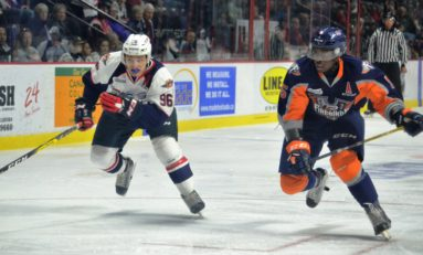 Who Should Lead Spitfires to Memorial Cup?