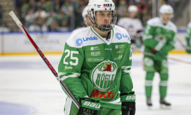 Lucas Elvenes - 2017 NHL Draft Prospect Profile