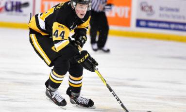 MacKenzie Entwistle - 2017 NHL Draft Prospect Profile