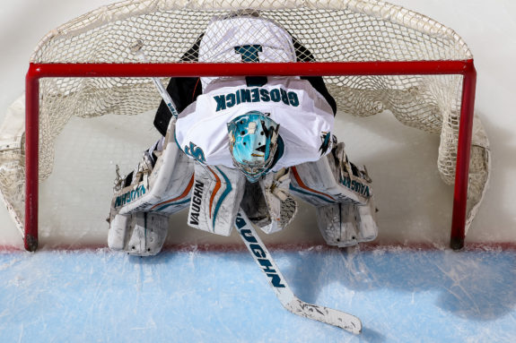 San Jose Barracuda goalie Troy Grosenick waits for the puck drop.