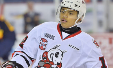 OHL Power Rankings: Niagara IceDogs Falling Hard