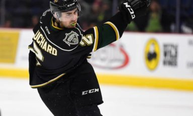 Bouchard, Formenton New Leaders for Knights