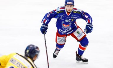 Martin Fehervary – 2018 NHL Draft Prospect Profile