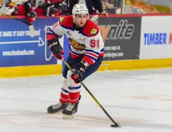 Anderson MacDonald Moncton Wildcats