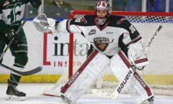 David Tendeck - 2018 NHL Draft Prospect Profile