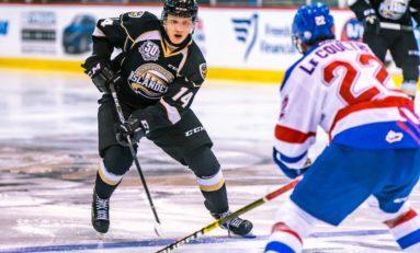 Nikita Alexandrov - 2019 NHL Draft Prospect Profile