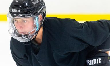 Beauts Add Grit, Depth With Kirchberger Signing