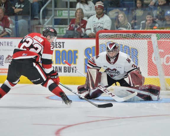 OHL, Nico Daws, Guelph Storm