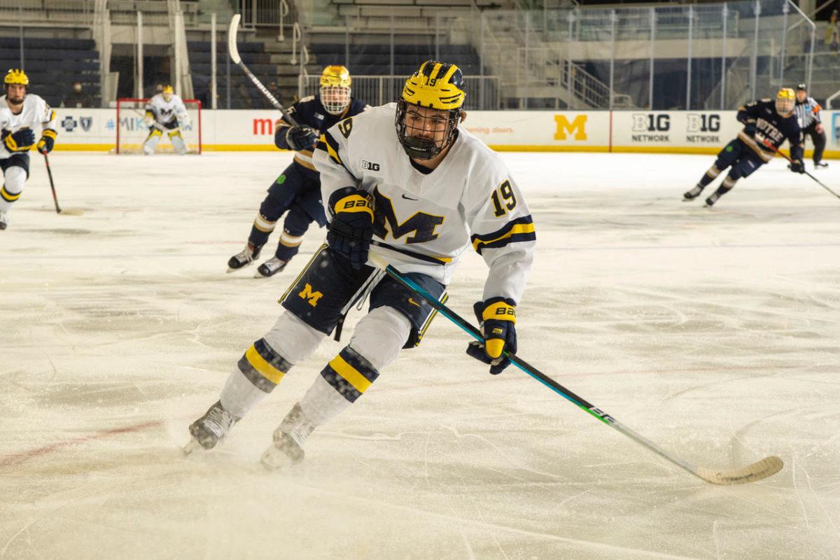 Brendan Brisson, Michigan Wolverines