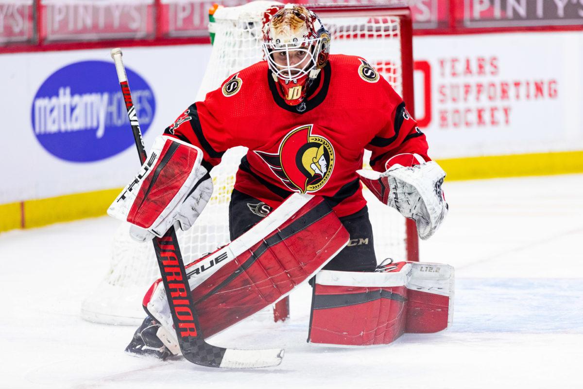 Joey Daccord Ottawa Senators