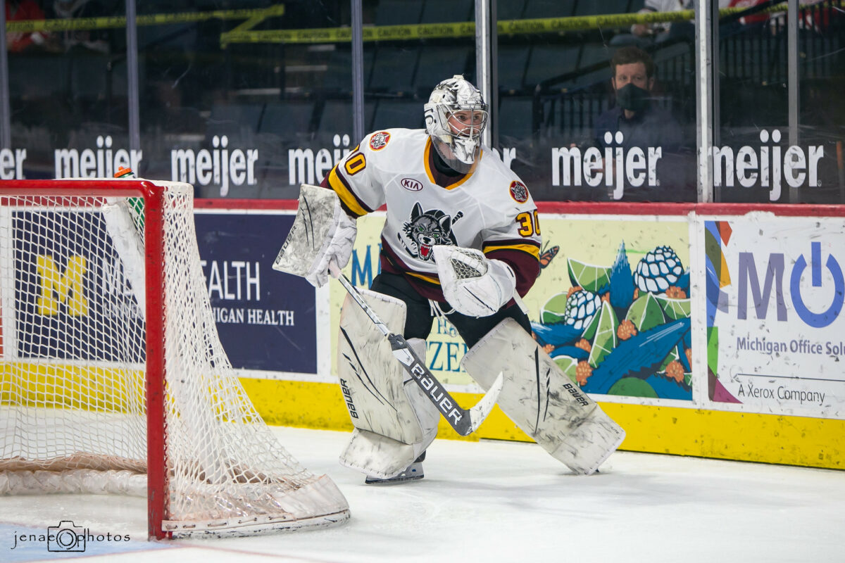 Beck Warm, Chicago Wolves