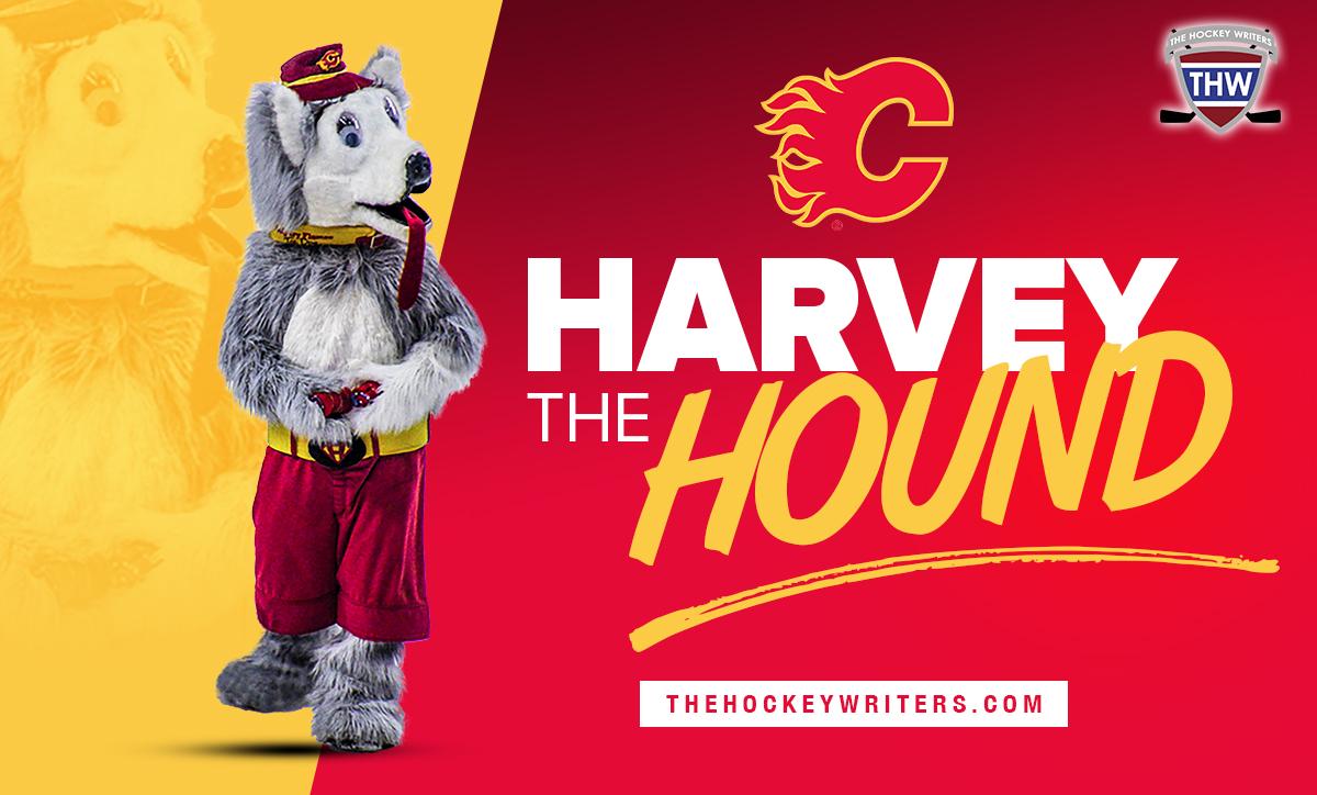 Harvey the Hound Calgary Flames